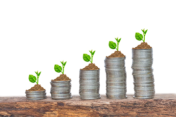 trees growing in a sequence of germination on piles of coins